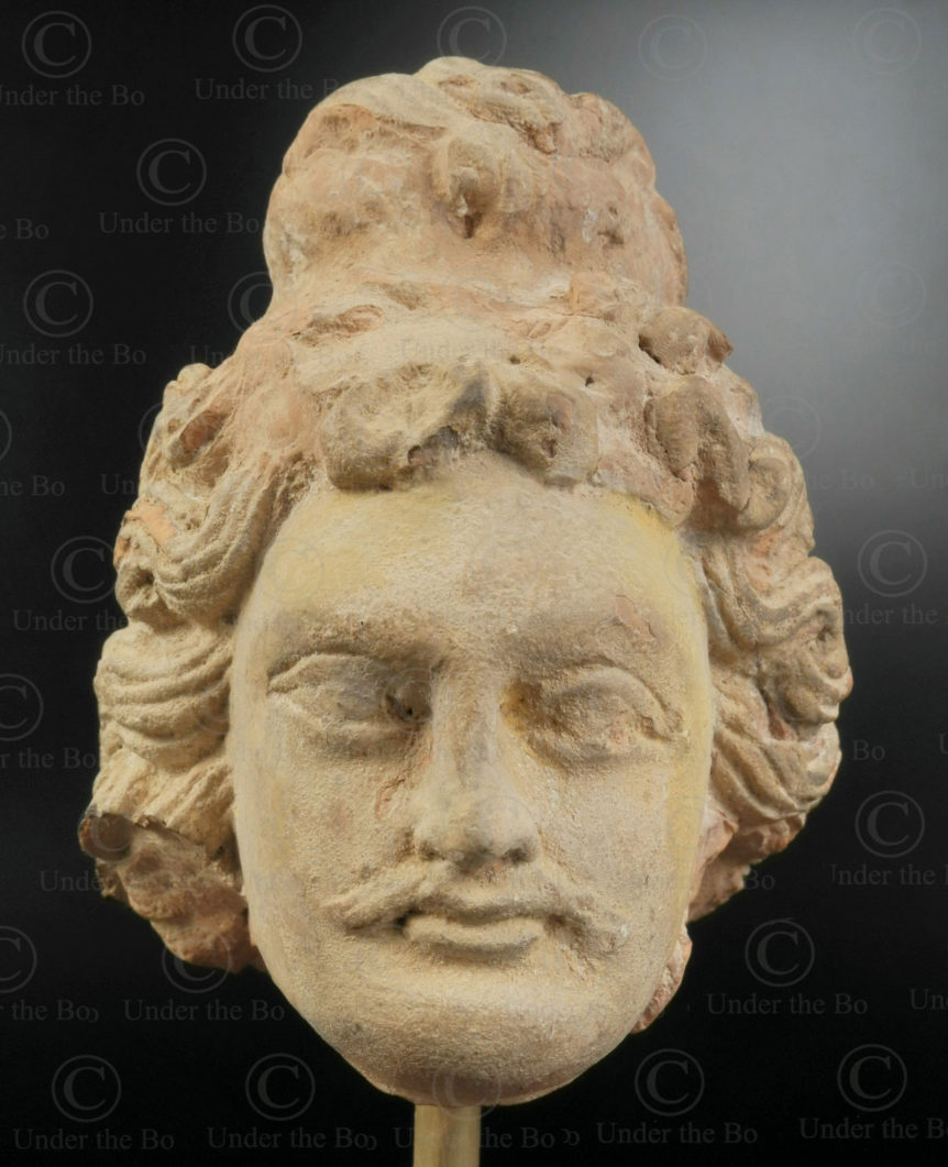 Gandhara bodhisattva head PK250. Ancient Buddhist kingdom of Gandhara. Found in the valley of Swat, Northern Pakistan.